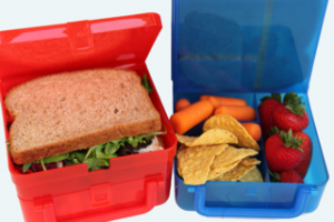 Green lunchboxes reduce plastic baggie waste